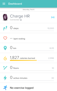 Daily Dashboard - Fitbit
